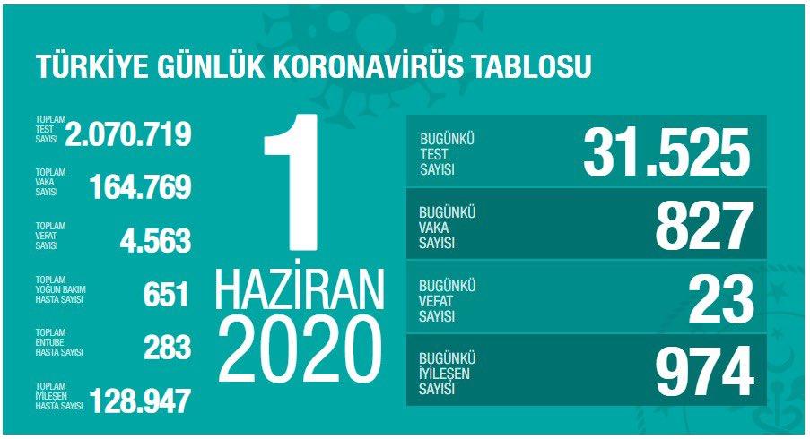 1 Haziran Türkiye Koronavirüs Tablosu Açıkladı