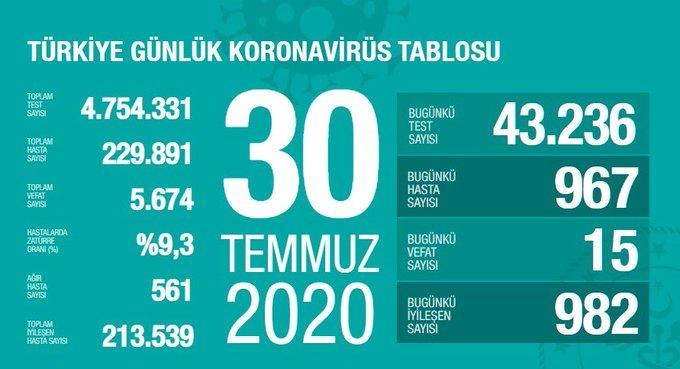 30 Temmuz Türkiye Koronavirüs Tablosu Açıkladı