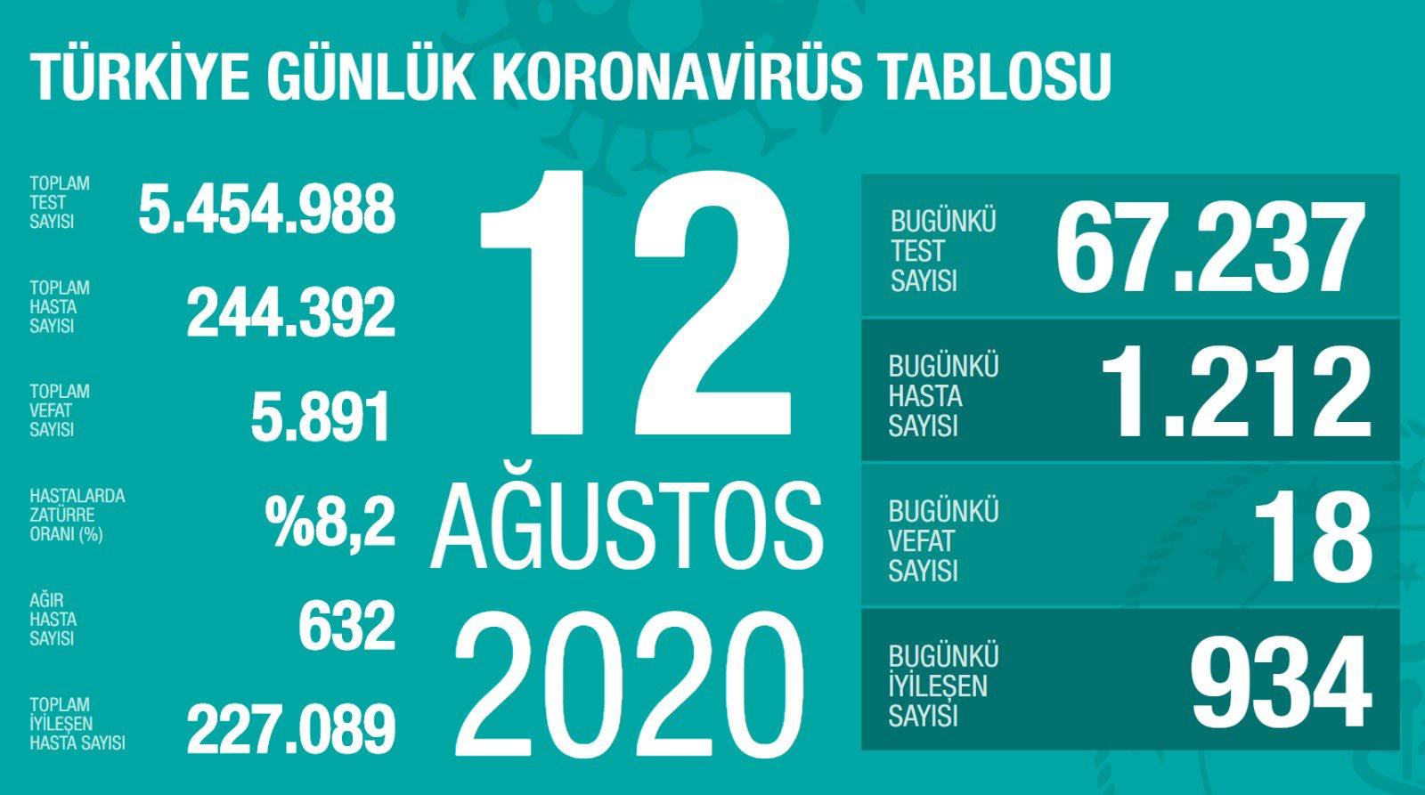 12 Ağustos Türkiye Koronavirüs Tablosu Açıkladı