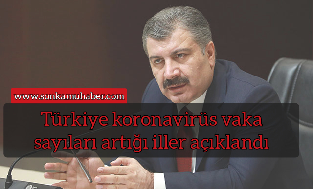 Türkiye Kasım 2020 koronavirüs vaka sayıları artığı iller