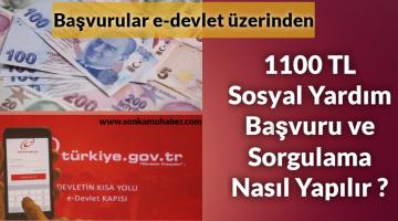 SON DK; 1100 TL Sosyal Yardım Başvuru ve Sorgulama Nasıl Yapılır (e-Devlet) 2021
